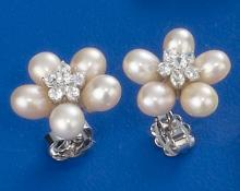 Pearl Earrings HTE107